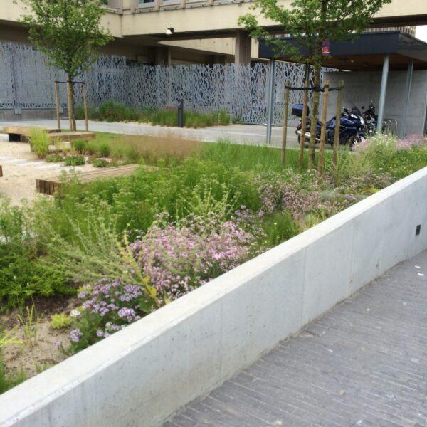 Groenomgeving bedrijfsgebouwen in centrum Brussel