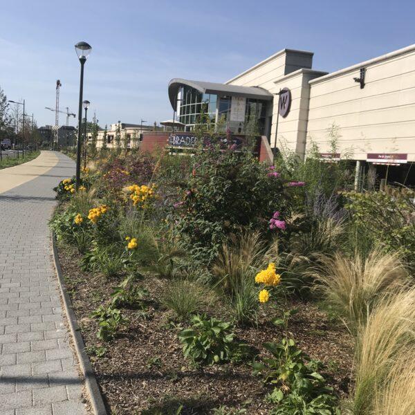 beplantingen aanleg woluwe shopping center